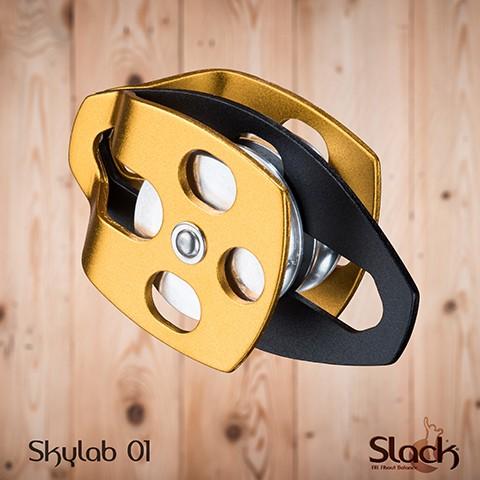 Skylab01