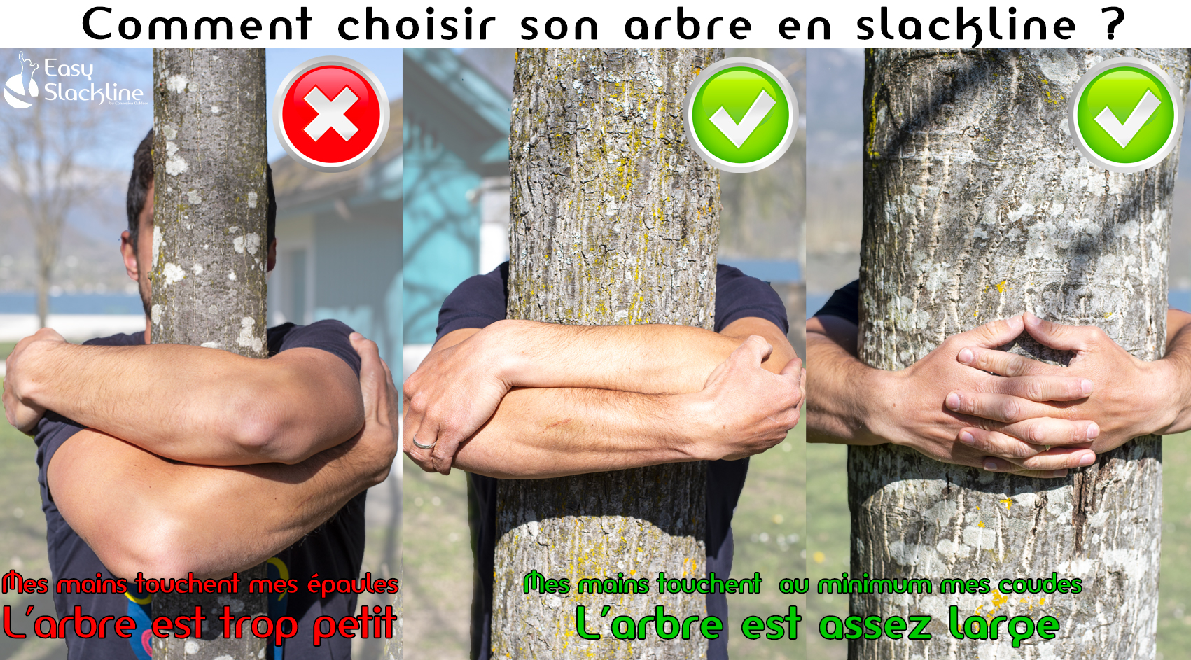 Choisir un arbre pour le slackline