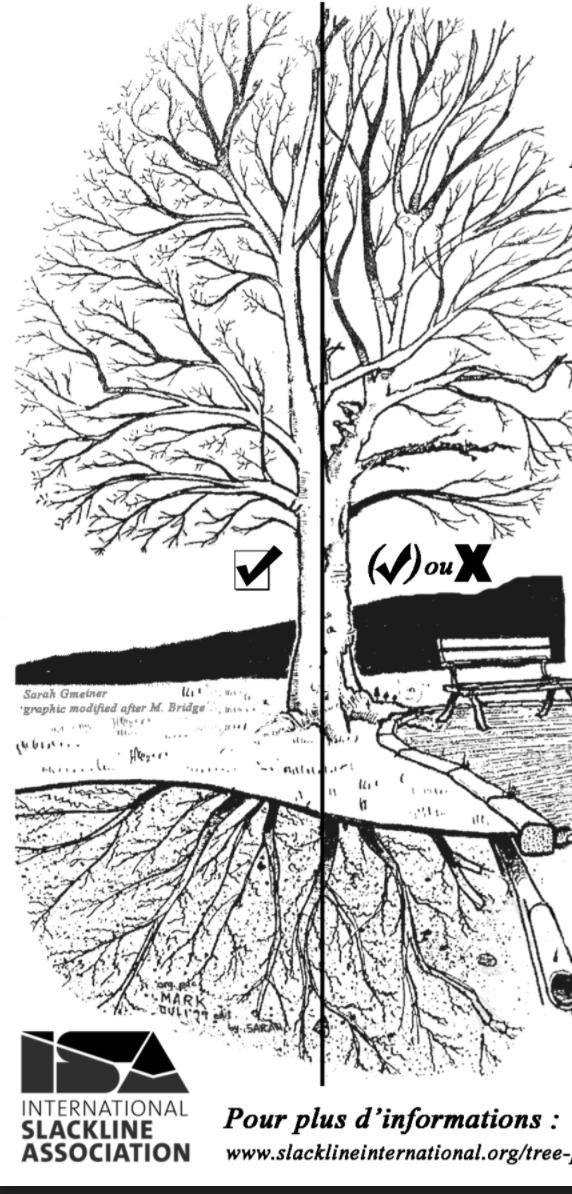 illustration de l'environnement extérieur d'un arbre