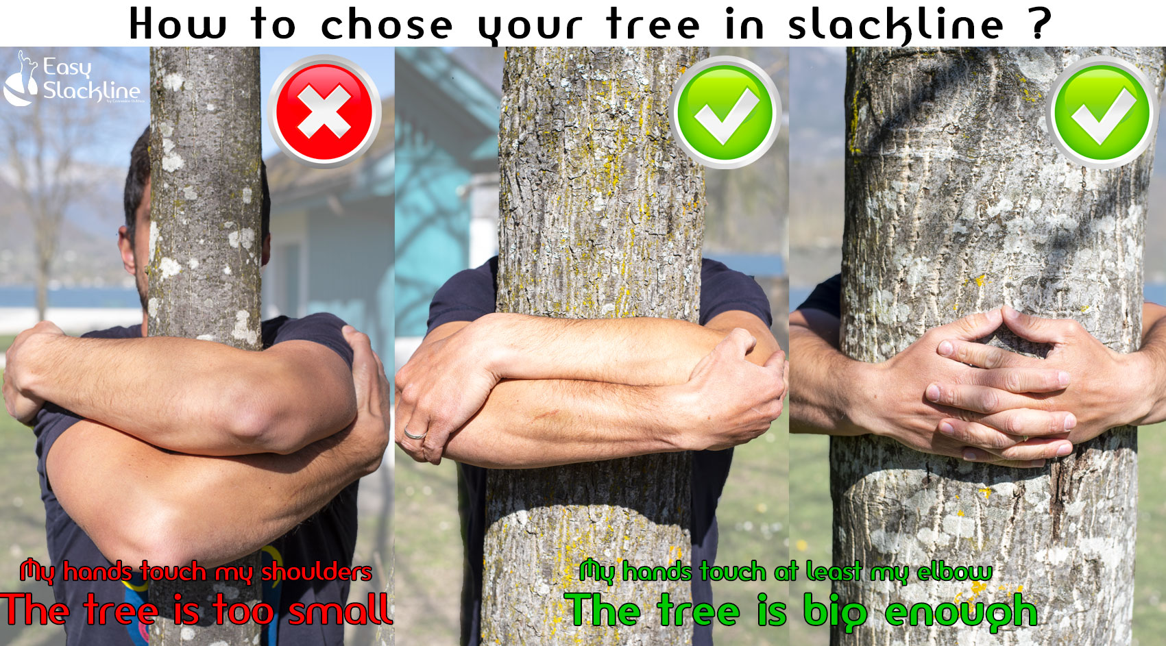 how to chose your tree in slackline ?