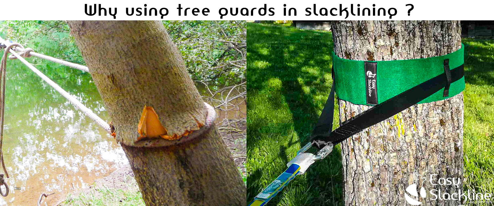 Why using tree guard in slackline ?